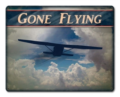 Sign-Gone Flying Airplane