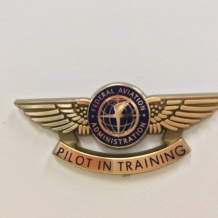 Jr Pilot Wings